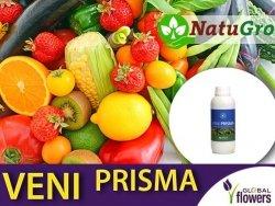 VENI PRISMA ekologiczny nawóz mineralny NK 1 litr