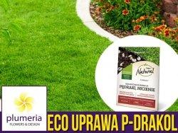 P-Drakol na trawniki. Mikrobiologiczny preparat na pędraki, nicienie. 20g