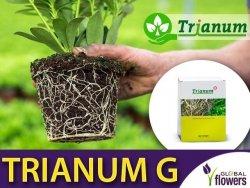 TRIANUM G pożyteczny grzyb na choroby glebowe (granulat)