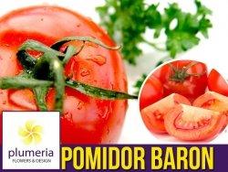 Pomidor BARON F1 odporny, pod osłony  (Lycopersicon Esculentum) nasiona 0,1g