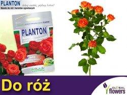 PLANTON® Nawóz do róż i kwiatów ogrodowych 1kg