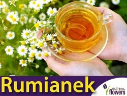 Rumianek (Matricaria chamomilla) 0,2g