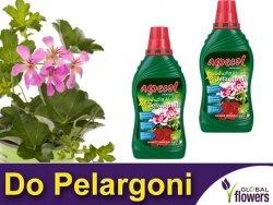 Agrecol Nawóz mineralny do pelargonii 0,25L