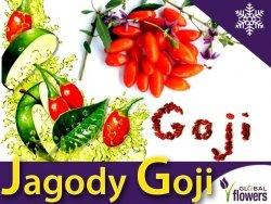 Jagody Goji Kolcowój Pospolity (Lycuim barbarum) Sadzonka