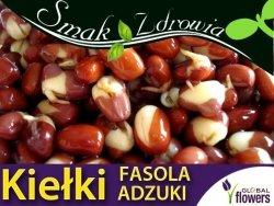 Nasiona na Kiełki  Fasola Adzuki (Vigna angularis) 50g