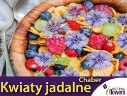 Kwiaty jadalne - Chaber bławatek niebieski nasiona 1g
