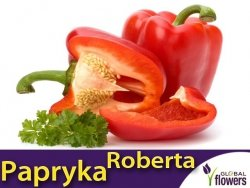 Papryka Czerwona Słodka ROBERTA (Capsicum annuum) nasiona XL 1g