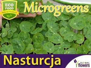 Microgreens - Nasturcja niska półpełna różowa 20g