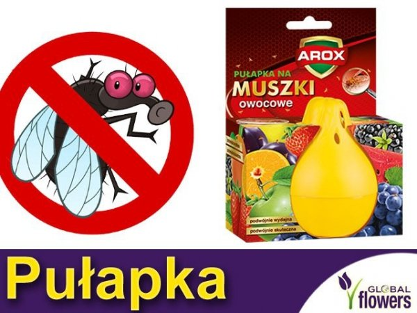 Arox Pułapka na muszki owocowe
