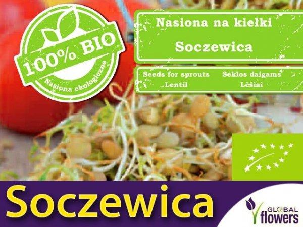 BIO Soczewica - nasiona na kiełki 30g