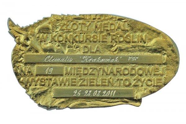 Clematis Powojnik 'Krakowiak' uprawa