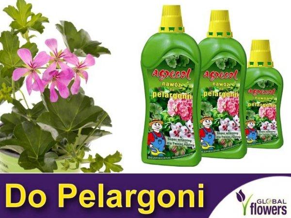 Agrecol Nawóz do pelargonii 0,75L
