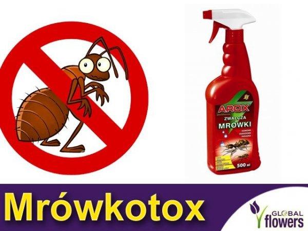 Arox MRÓWKOTOX Płynny preparat na mrówki 500ml