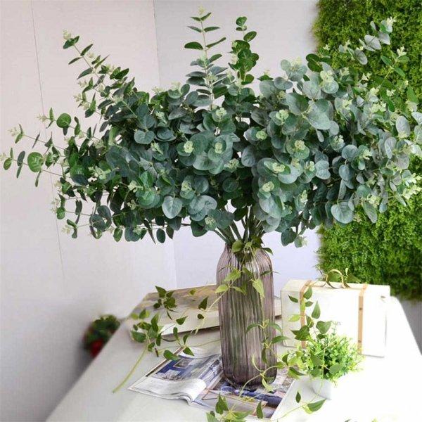 eukaliptus do bukietów