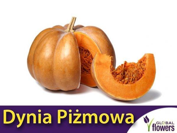Dynia Piżmowa - Muscade de Prowence (Cucurbita moschata)