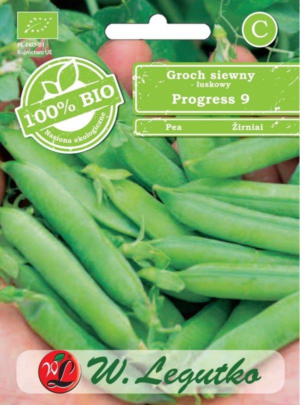 Groch siewny ekologiczne nasiona
