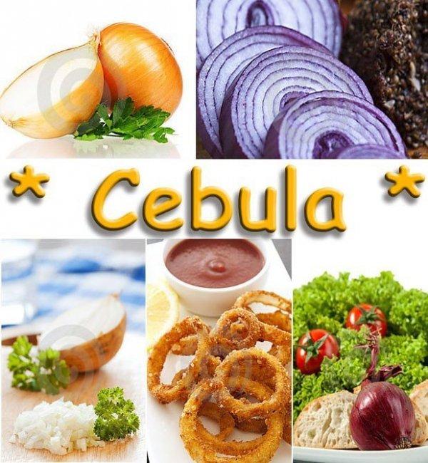 Średniowczesna odmiana cebuli