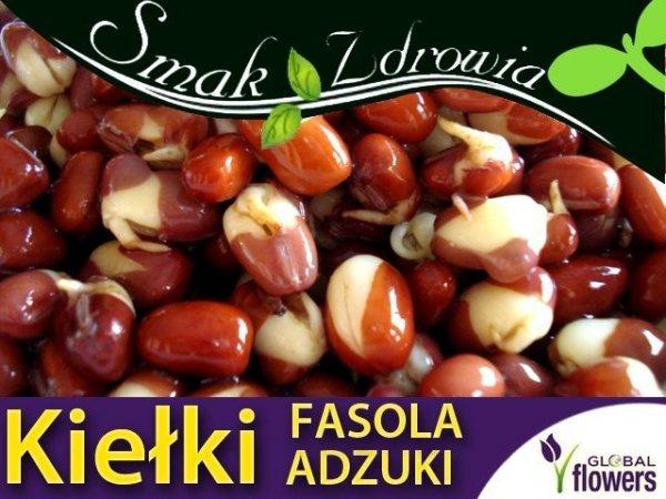 Nasiona na Kiełki Fasola Adzuki (Vigna angularis)