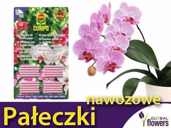 COMPO Pałeczki nawozowe do orchidei 20 szt