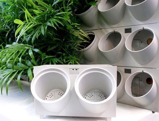 ogród wertykalny z systemem nawadniania