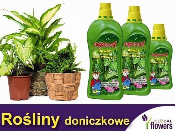 Agrecol Nawóz do roślin doniczkowych 0,35L