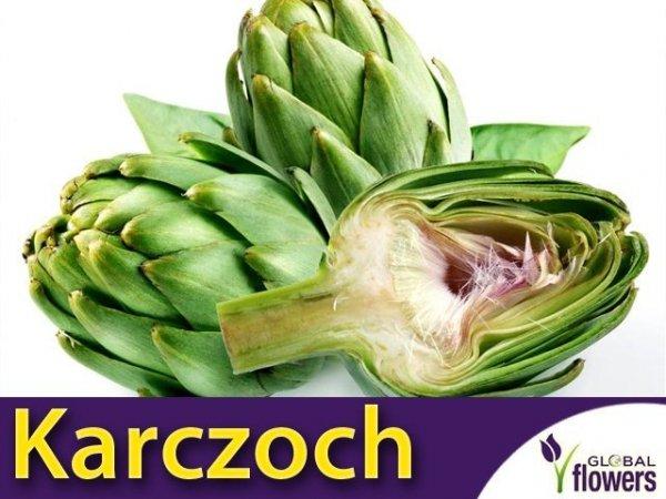 Karczoch Green Globe (Cynara scolymus) 1g