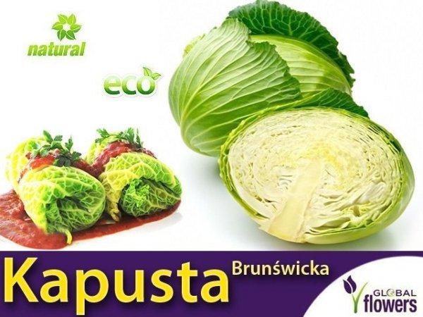 Kapusta Brunświcka - Najlepsza na gołąbki (Convar.Capitatan var. Alba) 50g