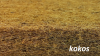 Materac NATURA BABY  KOMFORT Line (NBKL1) KOKOS-PIANKA -GRYKA 120/60/8 cm FIKIMIKI