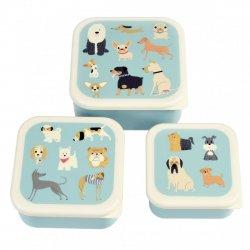 Rex, lunch box, 3szt, pieski best in show