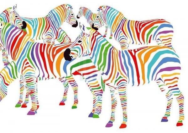 Macodesign, lampa wisząca, kolorowe zebry