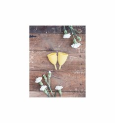 Lunette Menstrual Cup Yellow - model 2