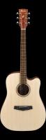 Ibanez PF 10CE-OPN Gitara elektroakustyczna