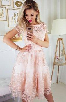 Bicotone 2135-17 sukienka koronkowa łososiowa