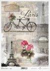 bike, tandem, Eiffel Tower, Paris, retro, bike for two, flowers, R499