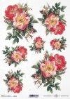 Flores de papel de arroz, rosas silvestres*Reispapierblumen , Wildrosen*Рисовые бумажные цветы, дикие розы