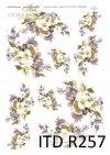kwiaty, jaśmin, jaśminowy, jaśminowiec, gałązki, R257