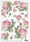 rose, roses, flower, flowers, bouquet, bouquets, R425