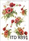 mak, maki, kwiat, kwiaty, kwiatek, kwiatki, R391