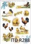 Wielkanoc, kurczaki, kurczaczki, kwiatki, wiosna, jajka, pisanki, R288