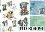 Papier ryżowy ITD R0409L