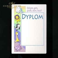 dyplom DS0143