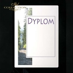 dyplom DS0152