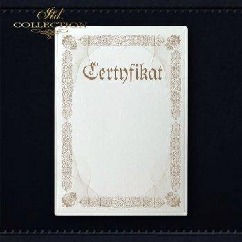 диплом DS0320 универсальный сертификат