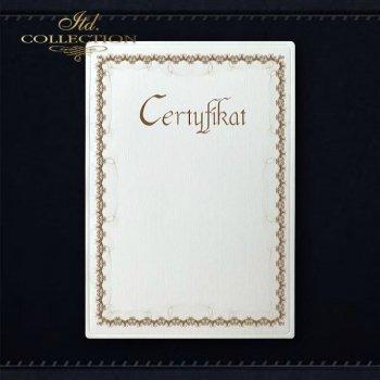 диплом DS0295 универсальный сертификат