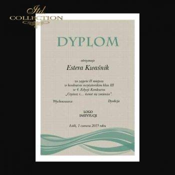 Diplom DS0331