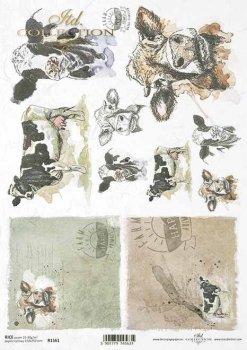 Reispapier für Serviettentechnik und Decoupage R1561