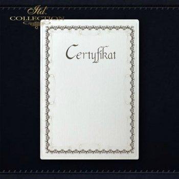 Diplom DS0293 Universelles Zertifikat