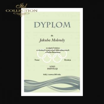 Diplom DS0330