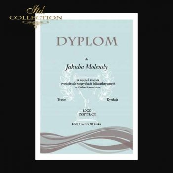 diploma DS0328