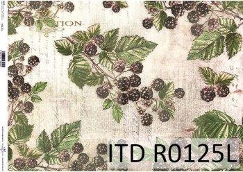 Papier ryżowy ITD R0125L